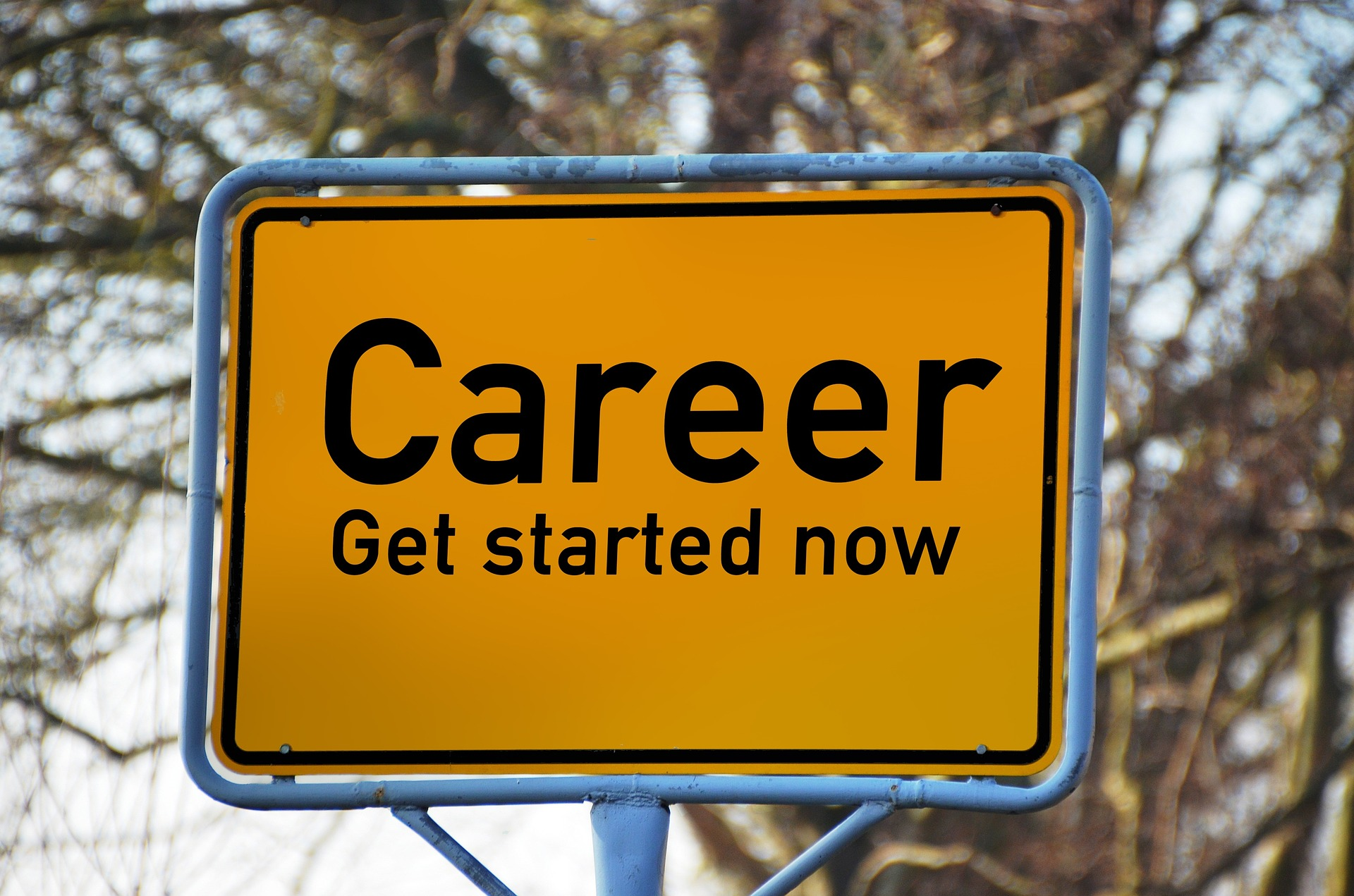 Fulfilling career development and major concerns around it