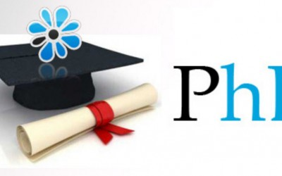How to Successfully Earn a PhD