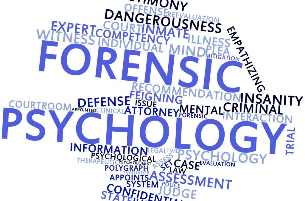 Eight Great Career Options for Criminology Graduates