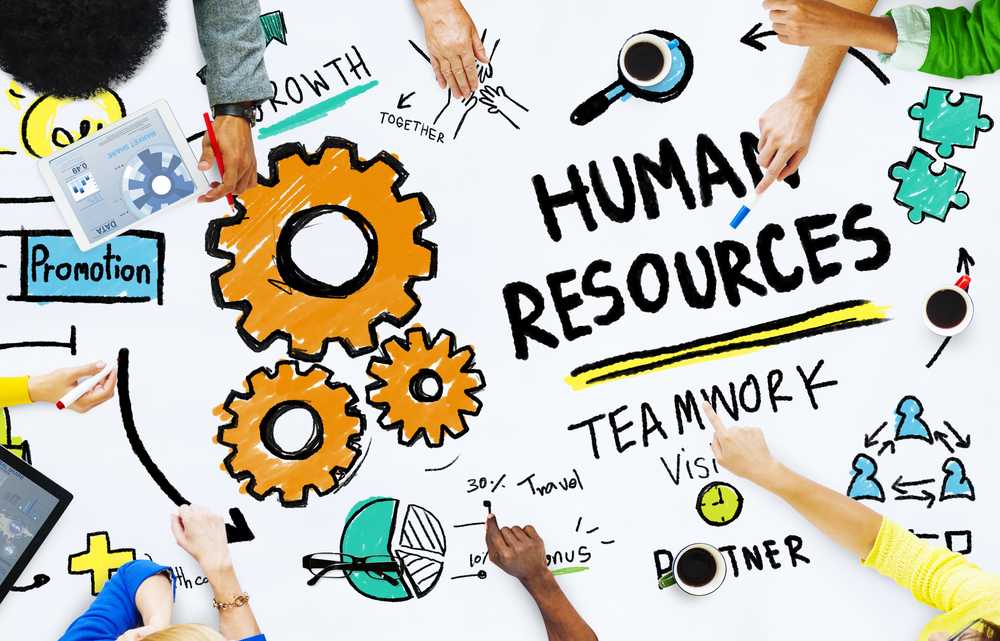 The Importance of HR Professionals in an Organisation's Growth