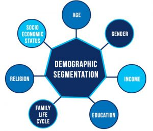 Demographic Segmentation Examples