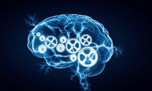 Cognitive Brain 300x180